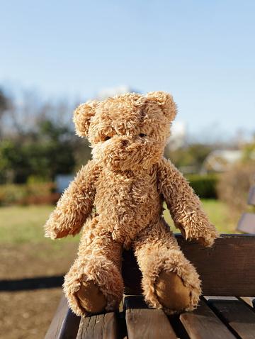 ぬいぐるみ「Teddy bear on the park bench」:スマホ壁紙(13)