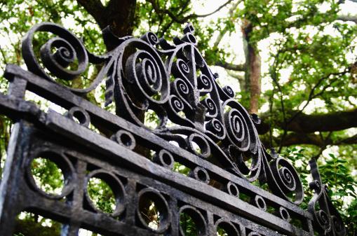 Charleston - South Carolina「USA, South Carolina, Charleston, Close up of ornate iron gate」:スマホ壁紙(12)