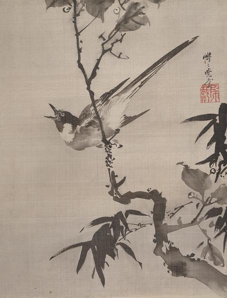 Songbird「Singing Bird On A Branch」:写真・画像(10)[壁紙.com]