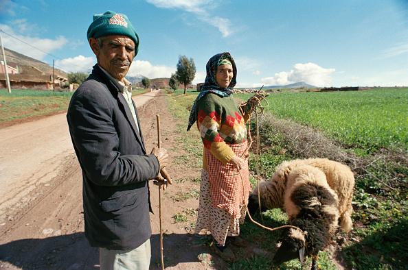 Rural Scene「Moroccan Berbers」:写真・画像(19)[壁紙.com]
