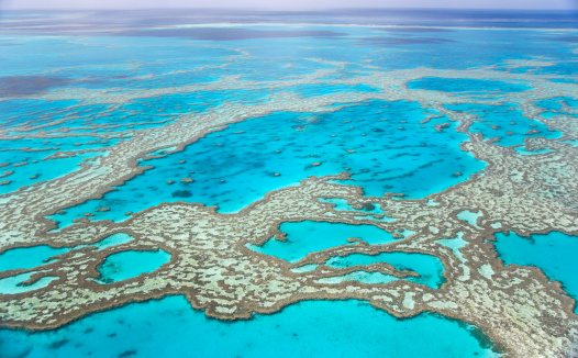 Queensland「Great Barrier Reef with blue ocean」:スマホ壁紙(9)