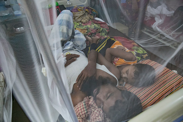 Bangladesh「Bangladesh Hit By Dengue Fever Outbreak」:写真・画像(15)[壁紙.com]