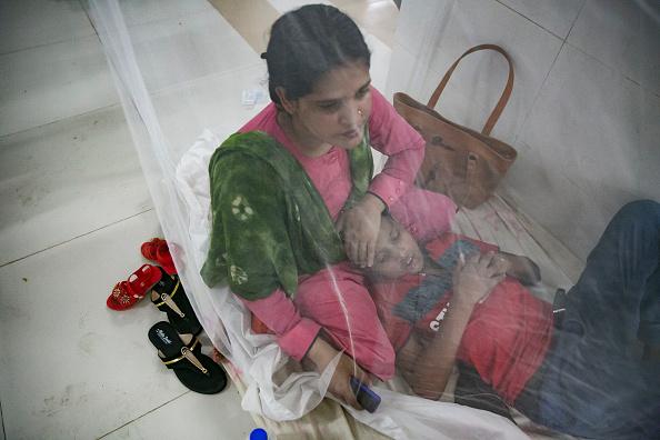 Bangladesh「Bangladesh Hit By Dengue Fever Outbreak」:写真・画像(7)[壁紙.com]