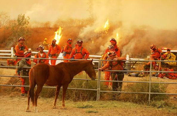 Temptation「New Wildfire Spreads Rapidly In Riverside County」:写真・画像(15)[壁紙.com]