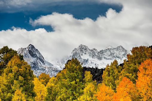 インヨー国有林「Eastern Sierra Fall Color」:スマホ壁紙(5)
