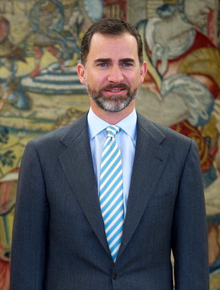 Carlos Alvarez「Prince Felipe of Spain Meets Knud Bartels at Zarzuela Palace」:写真・画像(11)[壁紙.com]