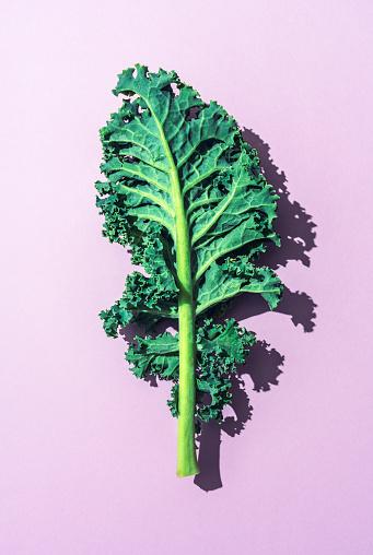 Supermarket「Kale」:スマホ壁紙(18)