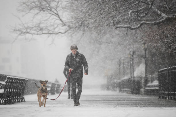 New York City Hit With Unusual April Snow:ニュース(壁紙.com)