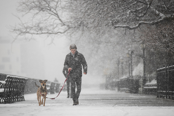 Blizzard「New York City Hit With Unusual April Snow」:写真・画像(16)[壁紙.com]