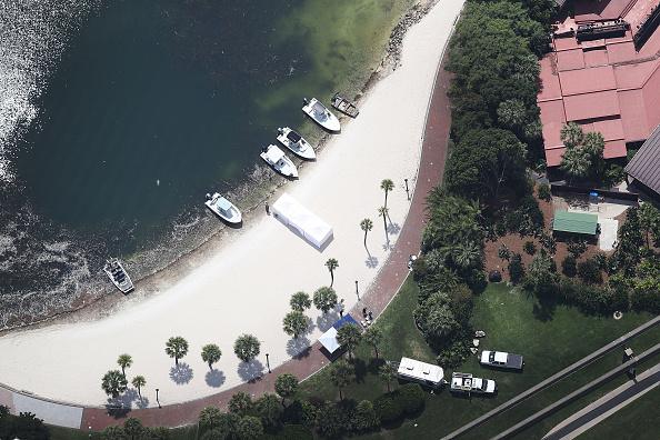 リゾート「Alligator Snatches  2-Year-Old Boy From Lake At Disney Resort」:写真・画像(19)[壁紙.com]