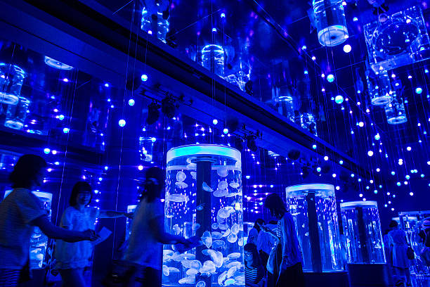 Neons And Jellyfish Attract Tokyoites To High-tech Aquarium:ニュース(壁紙.com)