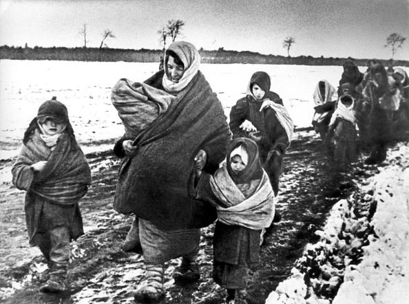 Slava Katamidze Collection「Russian Refugees」:写真・画像(19)[壁紙.com]