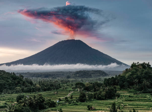 Mount Agung during eruption, at sunset, with rice paddies in foreground:スマホ壁紙(壁紙.com)
