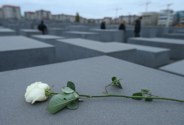 薔薇「Germany Commemorates Kristallnacht Pogroms 75th Anniversary」:写真・画像(1)[壁紙.com]