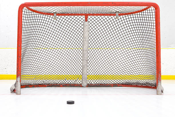 Hockey Puck Near Goal Net:スマホ壁紙(壁紙.com)
