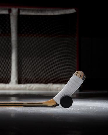 Hockey Stick「Hockey Puck, Stick, and Net」:スマホ壁紙(13)