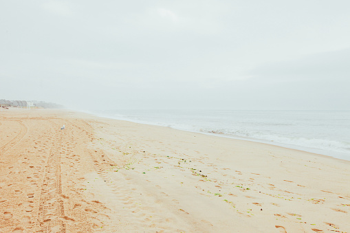波「Montauk Beach」:スマホ壁紙(6)