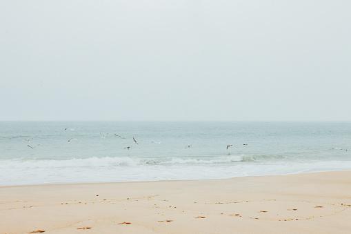 波「Montauk Beach」:スマホ壁紙(8)