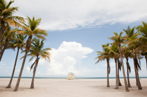 In A Row「Lifeguard stand, palm trees」:スマホ壁紙(6)