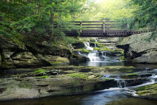 Footbridge「Bridge Over Vernooy Kill Falls Waterfall in  Catskill Mountains」:スマホ壁紙(10)