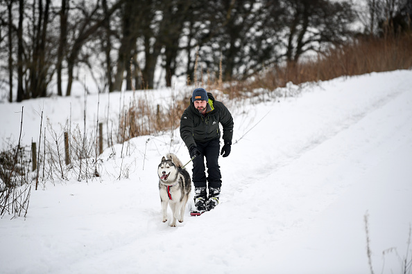Snow「Weather Warnings Still In Place Across The UK」:写真・画像(18)[壁紙.com]