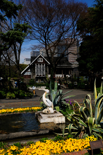 Carp「Hibiya park, Chiyoda Ward, Tokyo Prefecture, Honshu, Japan」:スマホ壁紙(17)