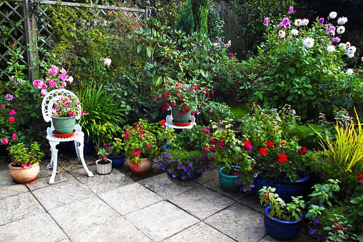 Botanical Garden「October English garden still full of flowers.」:スマホ壁紙(16)