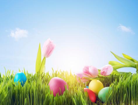 Pasture「Easter」:スマホ壁紙(10)