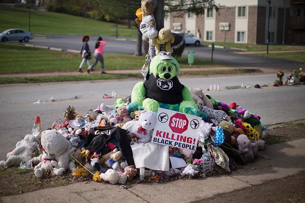 Stuffed「Ferguson Waits For Grand Jury Findings In Death Of Michael Brown」:写真・画像(14)[壁紙.com]
