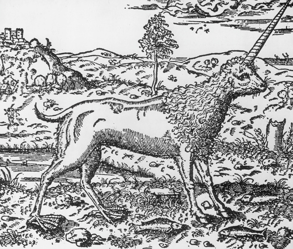 Fictional Character「Unicorn」:写真・画像(18)[壁紙.com]