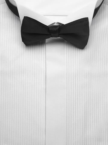 Well-dressed「Dinner Shirt and Bow Tie」:スマホ壁紙(14)