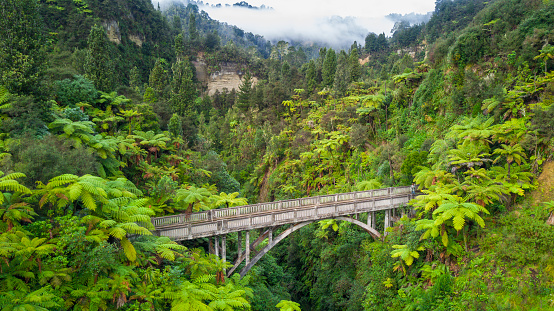 Rainforest「The Blue Duck lodge located in the Whanganui National park is a working cattle farm with a focus on conservation. The Bridge To Nowhere is a unique and historical landmark in the development of New Zealand. Its remote location makes it a rare tourist sigh」:スマホ壁紙(13)
