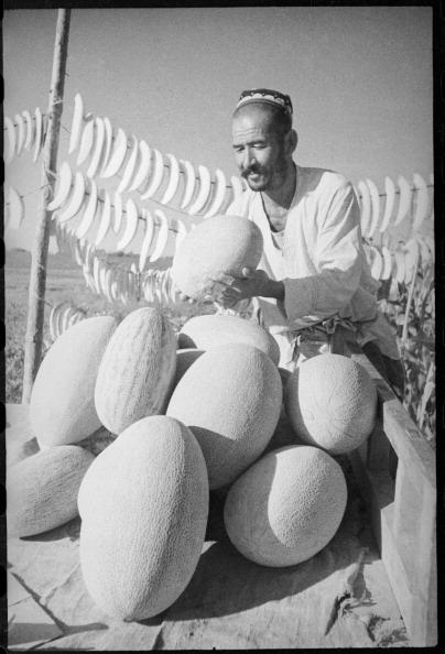 Max Penson「Melon-Grower」:写真・画像(8)[壁紙.com]