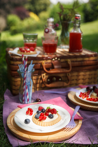 Picnic「Picnic in park with berry pies and fresh drinks」:スマホ壁紙(13)