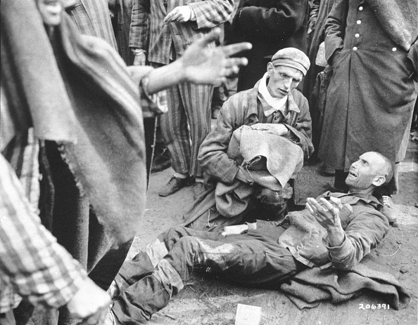 Holocaust「Victims of German & Austrian Nazi WW II Atrocities」:写真・画像(6)[壁紙.com]
