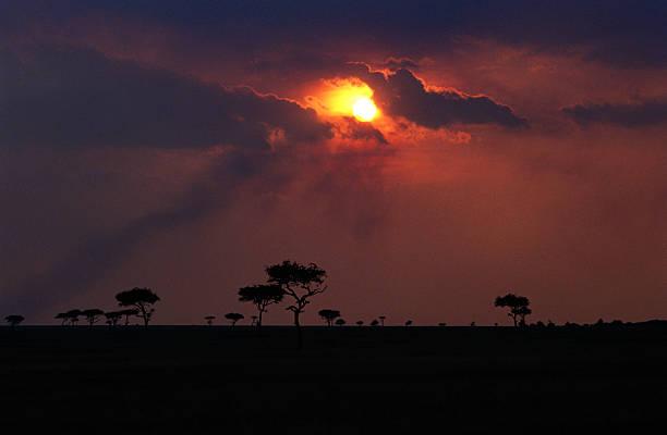 Masai In Kenya:ニュース(壁紙.com)