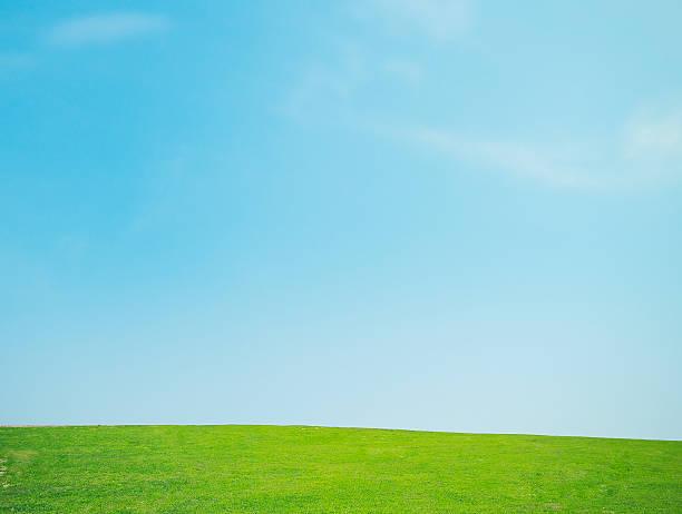Lawn and the sky:スマホ壁紙(壁紙.com)