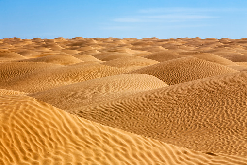 Arid Climate「Sea of sand in the Sahara Desert of Tunisia」:スマホ壁紙(7)