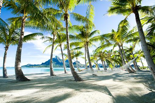 Hammock「Hammock at Bora Bora, Tahiti」:スマホ壁紙(17)