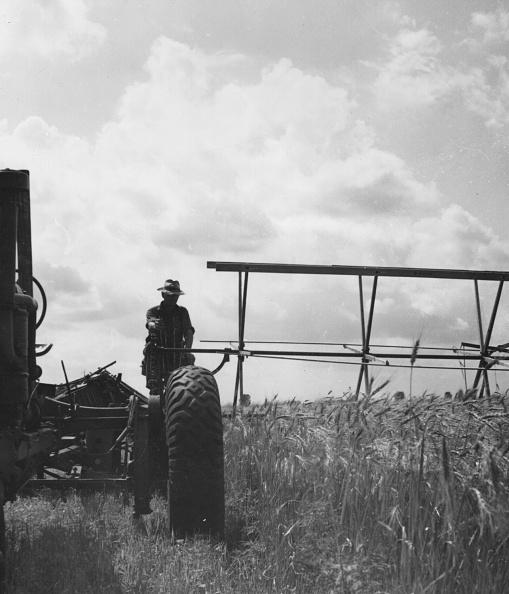Combine Harvester「Harvesting」:写真・画像(4)[壁紙.com]