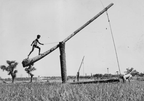 Agriculture「Asian Well」:写真・画像(6)[壁紙.com]