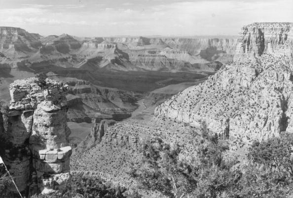 Arizona「Grand Canyon」:写真・画像(19)[壁紙.com]