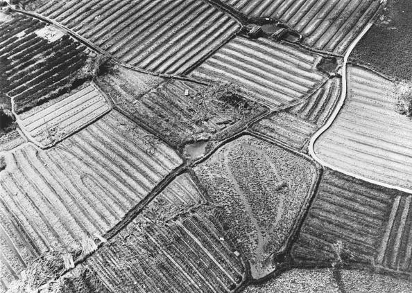 Land「Cultivated Land」:写真・画像(7)[壁紙.com]