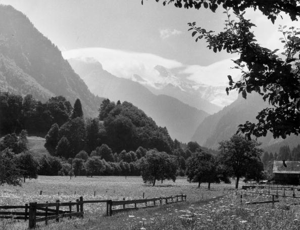 Tranquil Scene「Alpine Valley」:写真・画像(18)[壁紙.com]