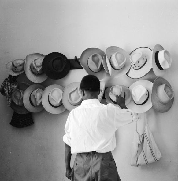 Hat「Hat Rack」:写真・画像(12)[壁紙.com]