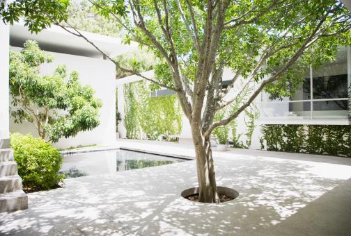 Standing Water「Courtyard」:スマホ壁紙(19)