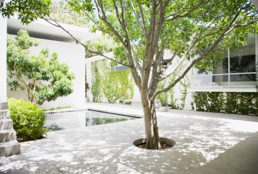 Courtyard「Courtyard」:スマホ壁紙(13)