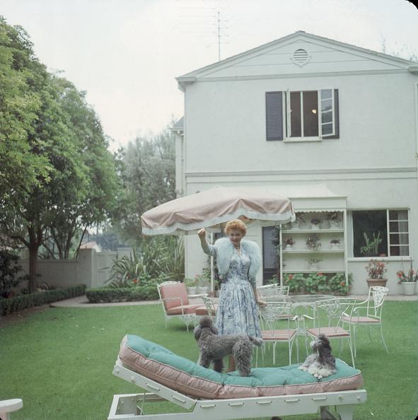 Grass「Lucille Ball & Her Dogs」:写真・画像(4)[壁紙.com]