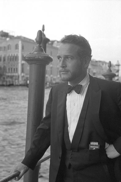 Pocket「Portrait In Tuxedo」:写真・画像(16)[壁紙.com]