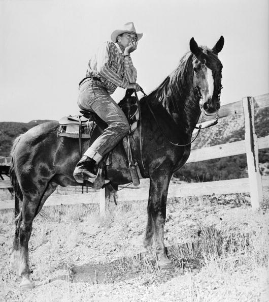 Recreational Horseback Riding「Gary In The Saddle」:写真・画像(15)[壁紙.com]